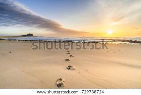 Path to beach and beautiful sunrise Australia Stock photo © lovleah