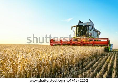 harvester combine stock photo © jordanrusev