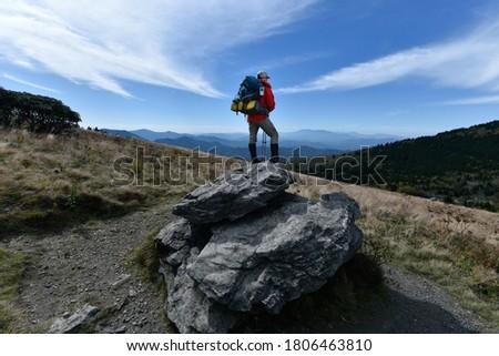 trail into the wilds stock photo © wildnerdpix
