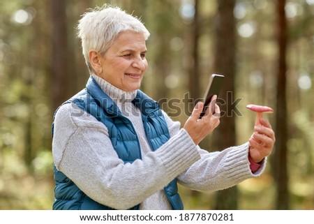 woman using smartphone to identify mushroom Stock photo © dolgachov