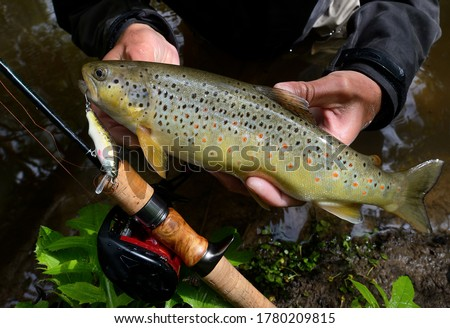 trout lures stock photo © taviphoto