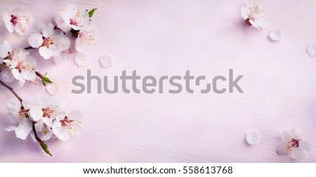 Background with flowers Stock photo © vavlt