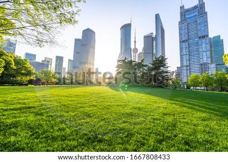park in city scene stock photo © bluering