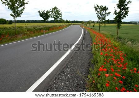 Estrada reconstrução asfalto preparado fundos Foto stock © simazoran