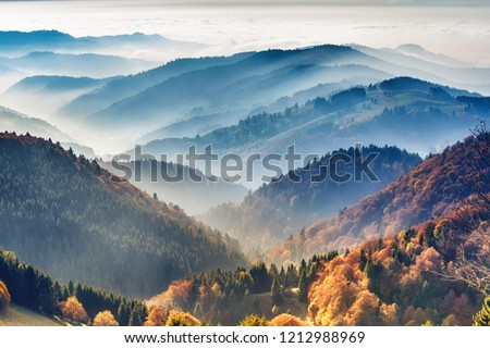 Black Forest Germany Stock photo © unkreatives