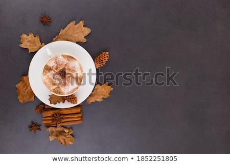 Autunno fette essiccati arance foglie cannella Foto d'archivio © Illia
