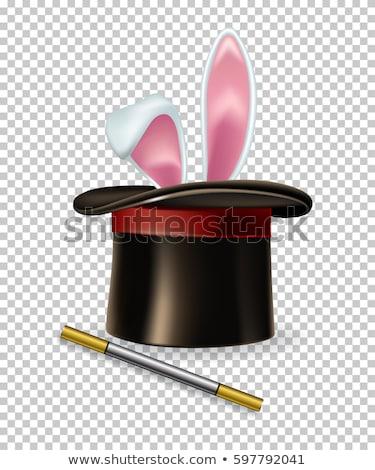 Coniglio mago Hat icona bianco design Foto d'archivio © smoki