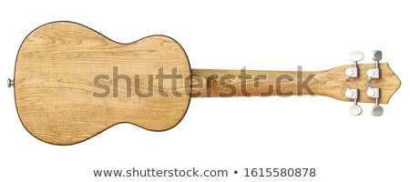 Fából készült hátulnézet 3D 3d render illusztráció izolált Stock fotó © djmilic