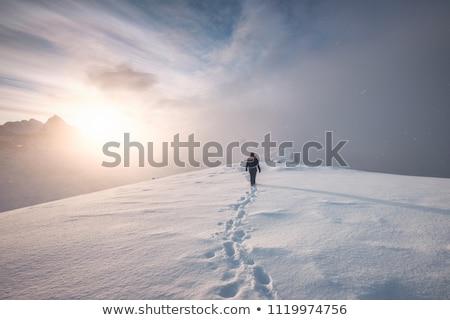 Footprints in the snow. Winter snow landscape Stock photo © galitskaya
