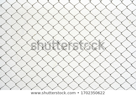 Chain link fence seamless pattern, black silhouette on white Stock photo © evgeny89