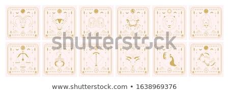Dierenriem teken astrologie horoscoop vector decoratief Stockfoto © robuart