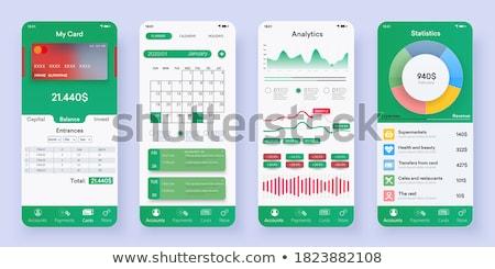 Személyes kiadások vezetőség app interfész sablon Stock fotó © RAStudio