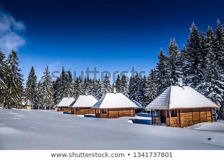 Serbian mountain village Stock photo © joyr