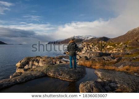 Ayakta taş Norveç dağlar orman Stok fotoğraf © gewoldi