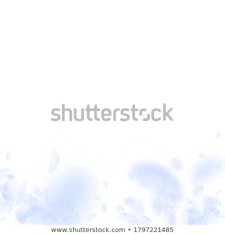 meisje · vallen · bloemen · hand - stockfoto © dolgachov
