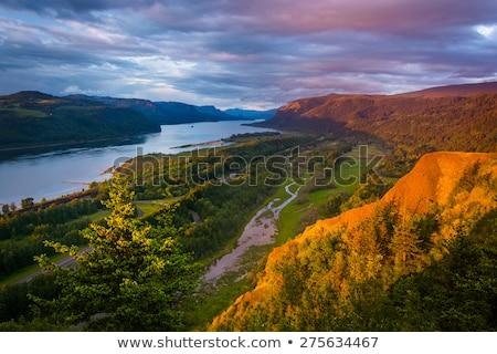 Columbia River Gorge Stock photo © bobkeenan