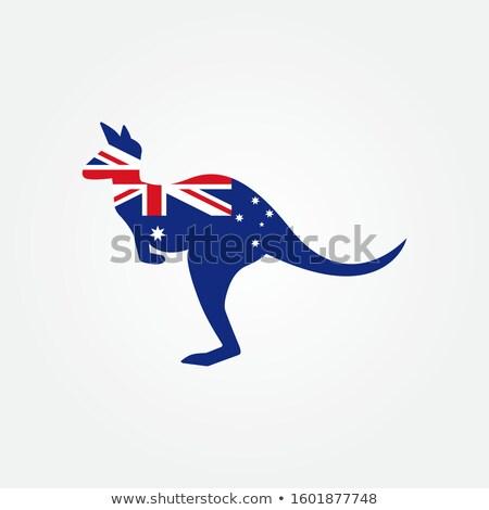 Spor kanguru gülen avustralya üniforma uygunluk Stok fotoğraf © sahua