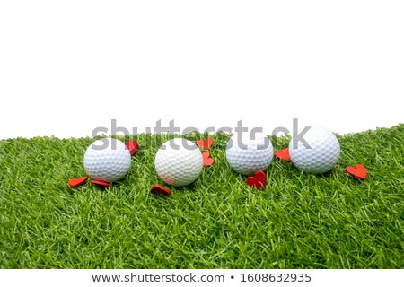 Golf and flowers stock photo © CaptureLight
