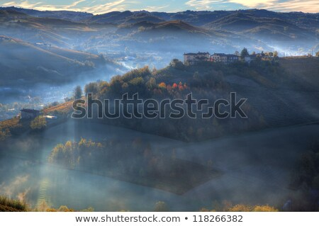 early morning and sunrise over hill of piedmont italy stock photo © rglinsky77