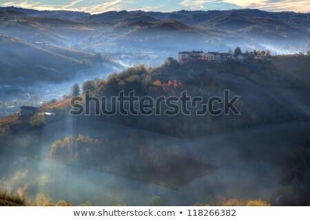 vinha · hills · nascer · do · sol · adelaide · céu · nuvens - foto stock © rglinsky77