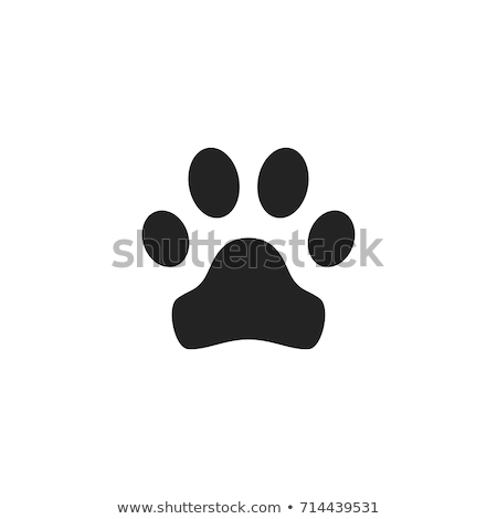 iconos · cara · tigre · mono · Cartoon - foto stock © carbouval