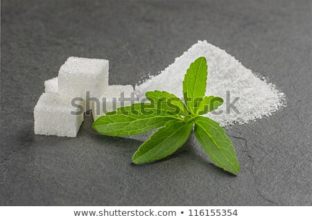 stevia leaves with stevia powder and sugar cubes on a slate plate stock photo © zerbor