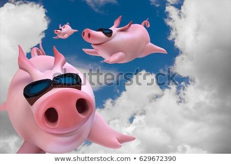 Porcos voar desenho animado voador porco animal Foto stock © fizzgig