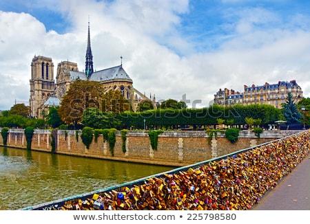 many love locks on the bridge stock photo © luckyraccoon