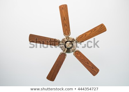 wood blades ceiling fan isolated stock photo © frameangel