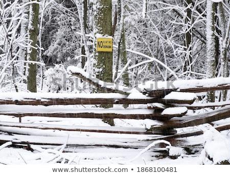 にログイン 冬 風景 金属 トラフィック ストックフォト © meinzahn