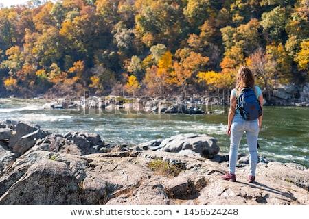 Fuera Washington DC río invierno hielo Foto stock © backyardproductions
