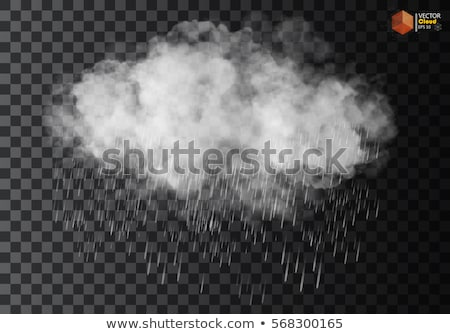 Chuvoso nuvem ilustração vetor abstrato negócio Foto stock © auimeesri