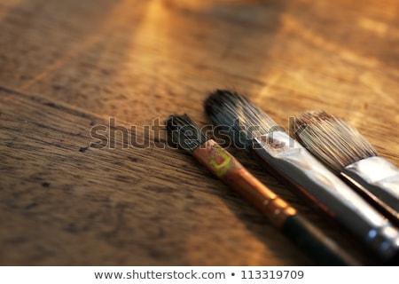Művész szépia gyűjtemény különböző összes vászon Stock fotó © morrbyte