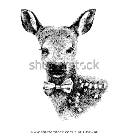 Kroki sevimli geyik bağbozumu stil vektör Stok fotoğraf © kali