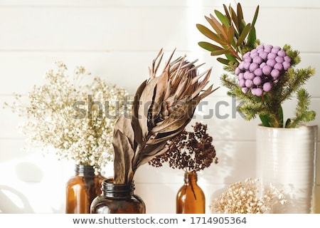 Glass bottle of dried flower Stock photo © nalinratphi