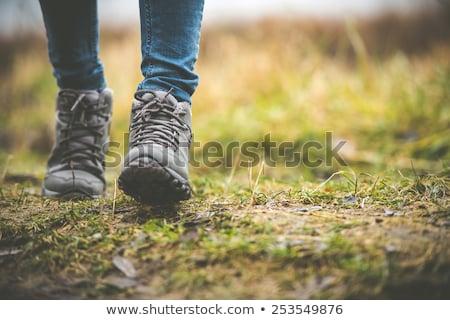vieux · lourd · randonnée · bottes · paire · brun - photo stock © pixelsaway