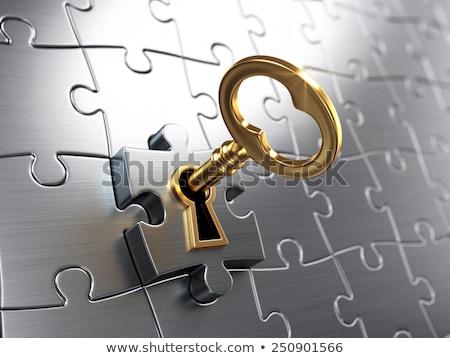 solution   golden key is inserted into the keyhole stock photo © tashatuvango
