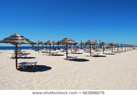 Tropicales playa mar cielo azul viaje Foto stock © compuinfoto