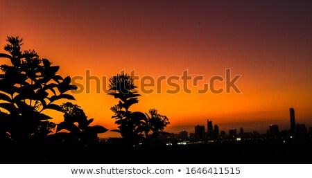 ver · Cingapura · brilhante · dia · negócio · céu - foto stock © elnur