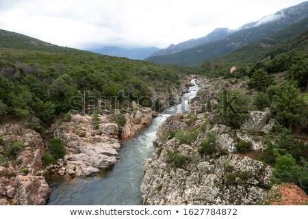 долины · Корсика · гор · реке · передний · план - Сток-фото © Joningall