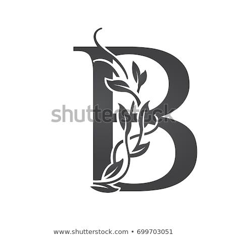 抽象的な · ベクトル · ロゴ · 手紙 · グラフィック · 黒 - ストックフォト © blaskorizov