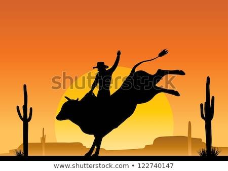 bull rider silhouette at sunset stock photo © adrenalina