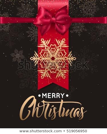 zarif · Noel · gümüş · kar · taneleri · sanat · 2016 - stok fotoğraf © beholdereye
