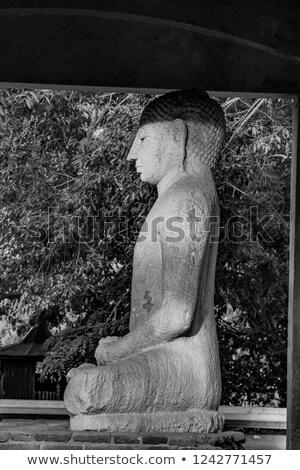 Szobor meditál szépség szentség Sri Lanka jókedv Stock fotó © meinzahn