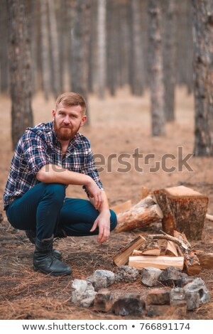 serious young handsome man sitting on logs and holding axe stock photo © deandrobot