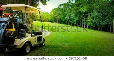 Golf cart on the fairway of a course Stock photo © njnightsky