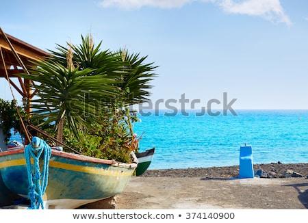 Praia canárias Espanha céu paisagem fundo Foto stock © lunamarina