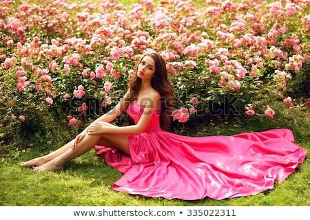 Lenyűgöző barna hajú pózol szexi divat modell Stock fotó © konradbak