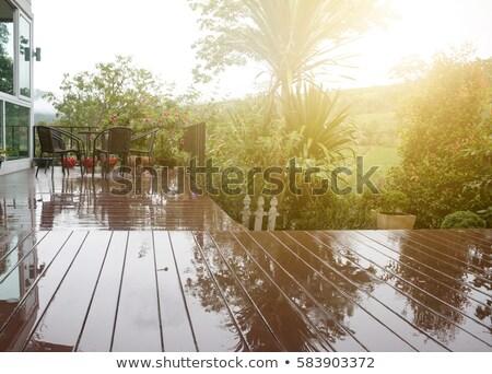 Molhado conselho superfície sólido rústico Foto stock © stevanovicigor
