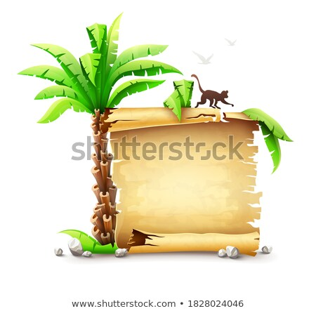 Old piratic bundle and palm of fairy-tale Stock photo © LoopAll